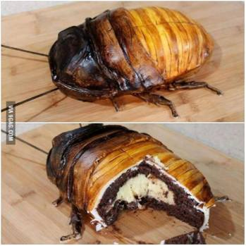 Roach Cake